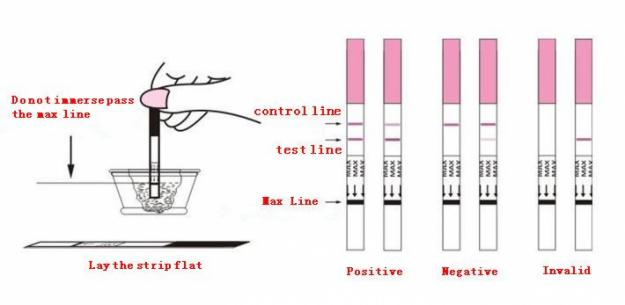 how to make a home pregnancy test