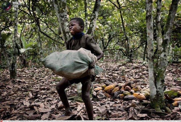 African slavery is still much alive report how africa news for African crops and slave cuisine