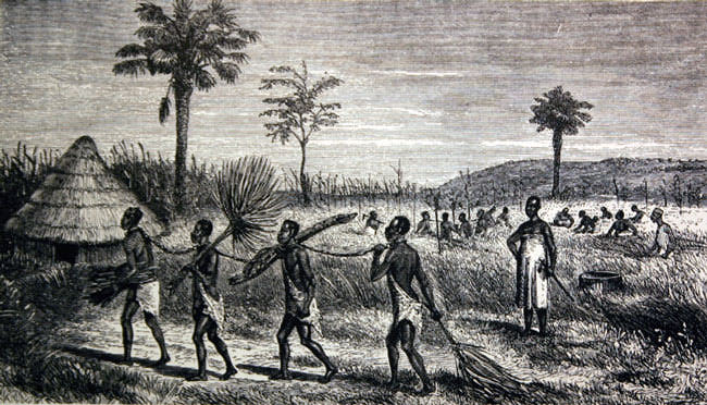the importance of land for african american slaves