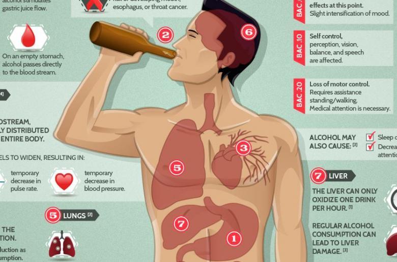 Вред алкоголя химия
