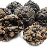 African locust beans