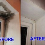 Effective mold removal
