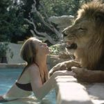 tippi with a lion