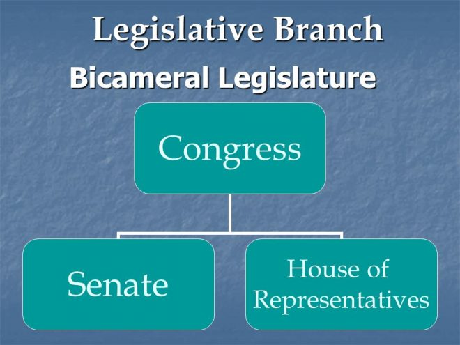 bicameral legislature I find bicameral legislatures a bit silly at the state level, where they're forbidden,  nominally for constitutional reasons, from replicating the exact.
